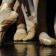 main-ballet